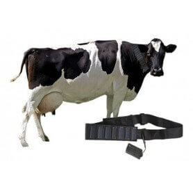 Locator gps solar for animals with self unlimited